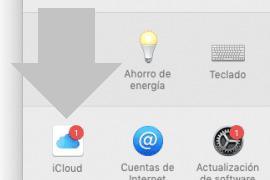 selecciona la opcion icloud